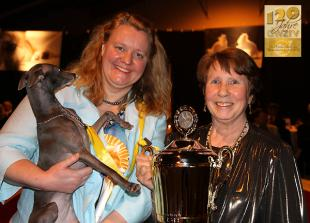 Sighthound of the Year Kategorie Coursing: Dark Legend's Echo (Dark Legend's Ufo x Dark Legend's Last Unicorn)