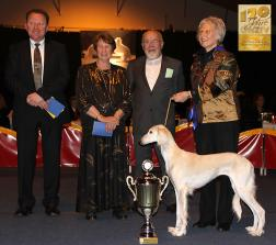 Sighthound of the Year Kategorie Schönheit & Leistung: Dakira Sawahin (Brahmani Sawahin x Shirin-Esther al Firdous) Züchter: Dagmar Hintzenberg-Freisleben & Manfred Freisleben Besitzer: Dagmar Hintzenberg-Freisleben & Karin Völker